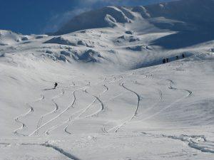 ski&snowboard-pe-Palea-Puha